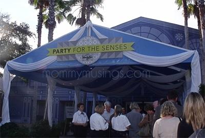 partyforthesenses2