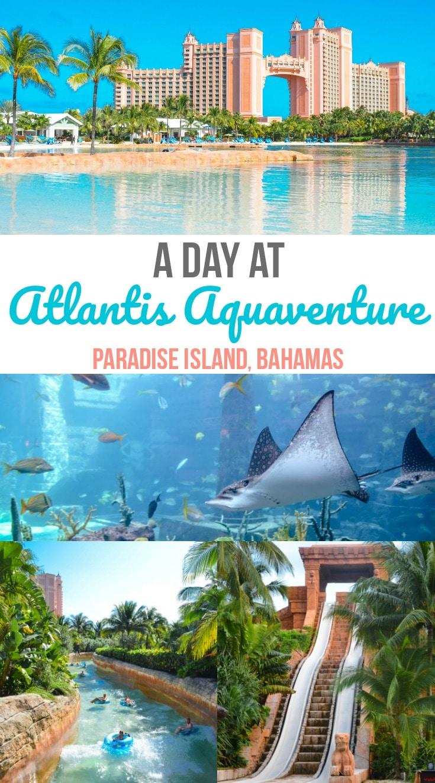 A Day At Atlantis Aquaventure Paradise Island Bahamas