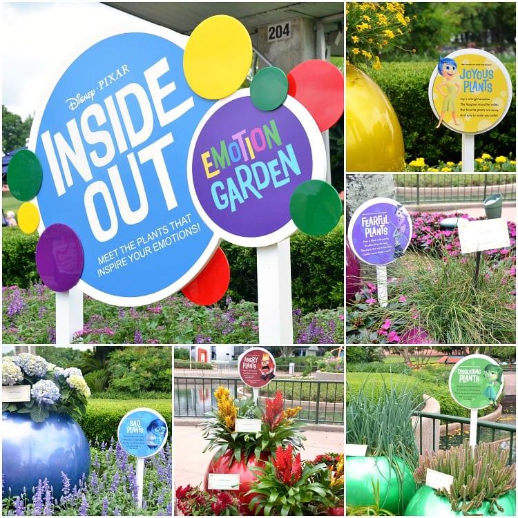 inside-out-garden