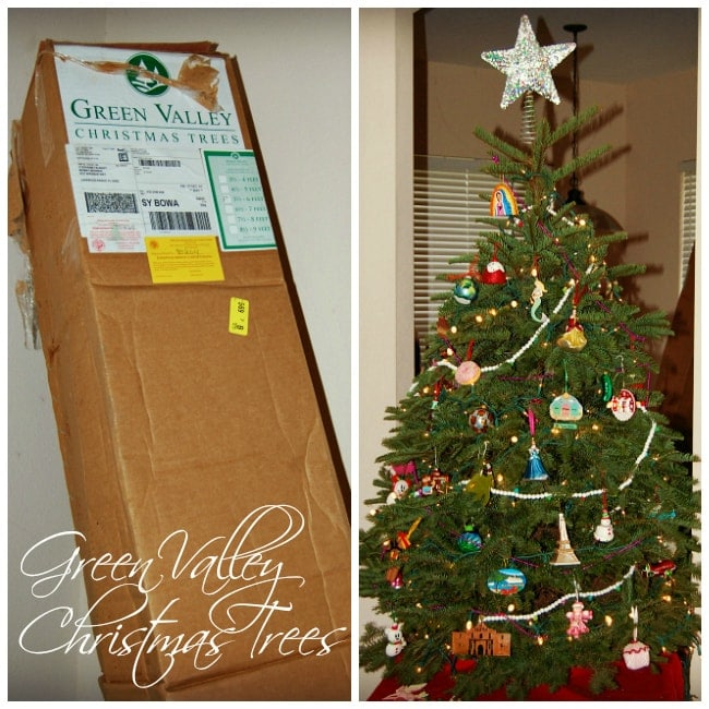 Full Noble Fir From Green Valley Christmas Trees {Review}