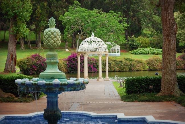 lanai pineapple plantation