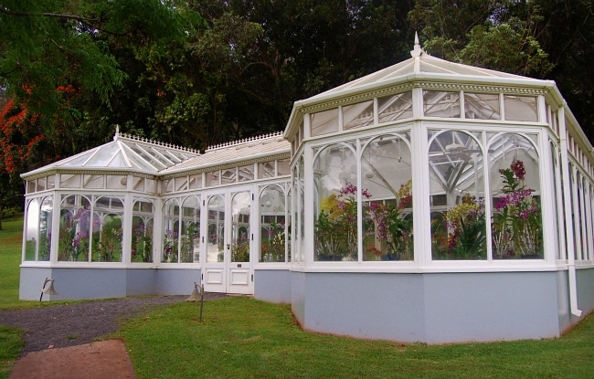 orchid house lanai