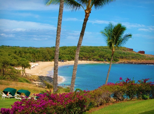 manele bay beach