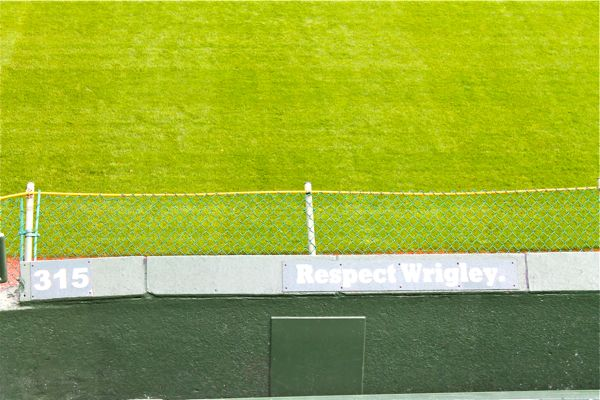 wrigley field people catcher