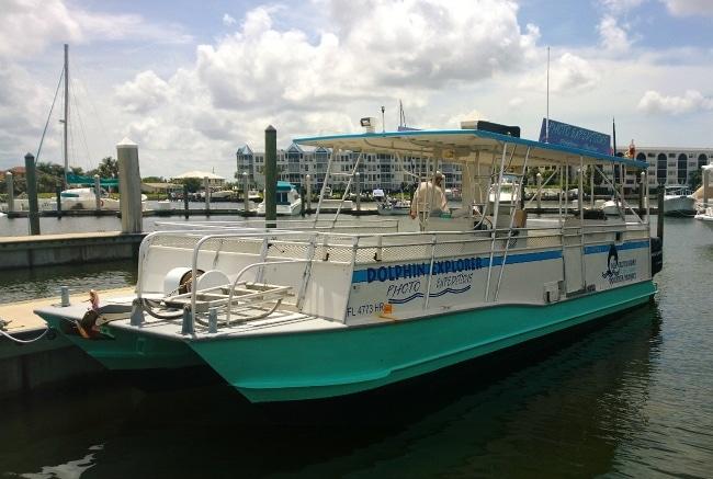 dolphin explorer cruise