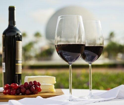 2013 epcot food wine festival
