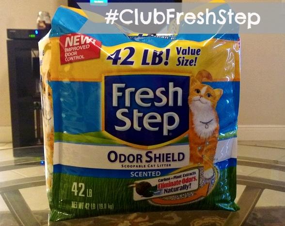 #clubfreshstep