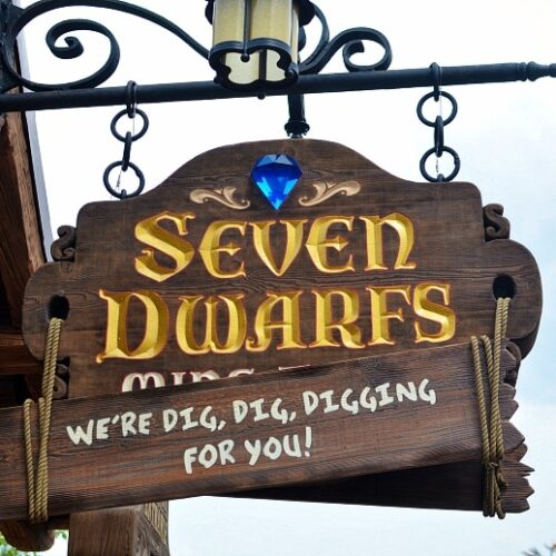 seven dwarfs mine train ride