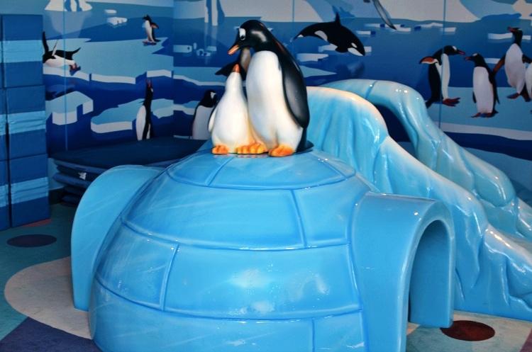 campocean_penguins