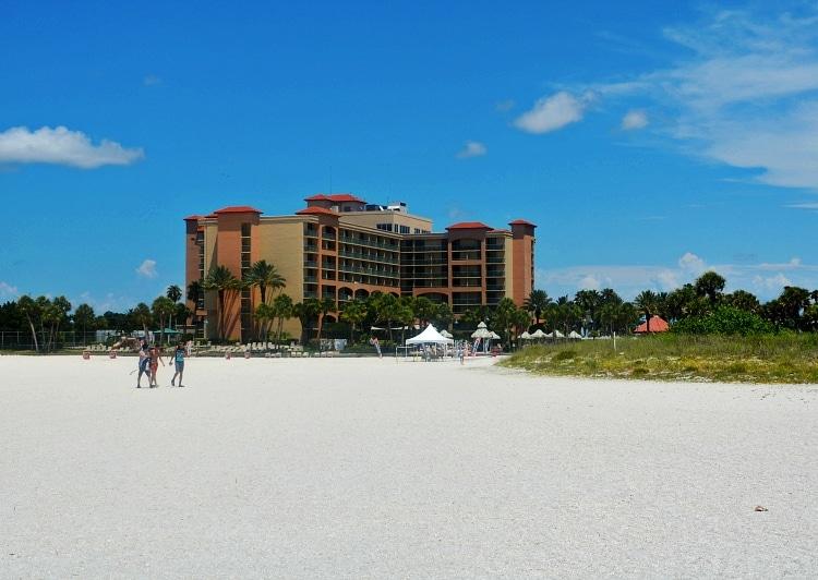 Sheraton Hotel Clearwater Beach Clearwater Fl