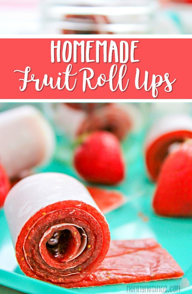 Homemade Fruit Roll Ups Recipe | Strawberry Fruit Leather