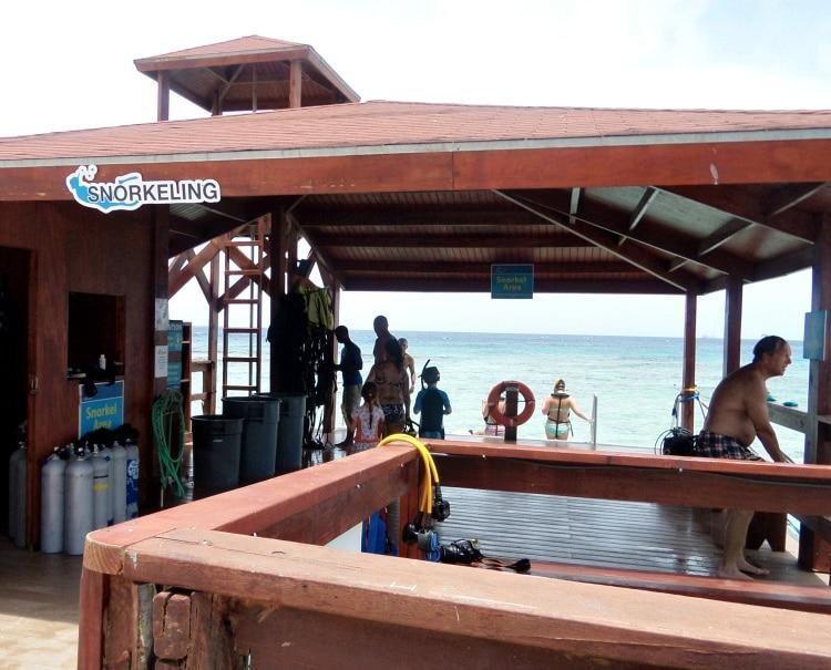 snorkeling de palm island