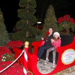 Top 5 Holiday Events in Florida