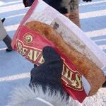 quebec city winter carnival food