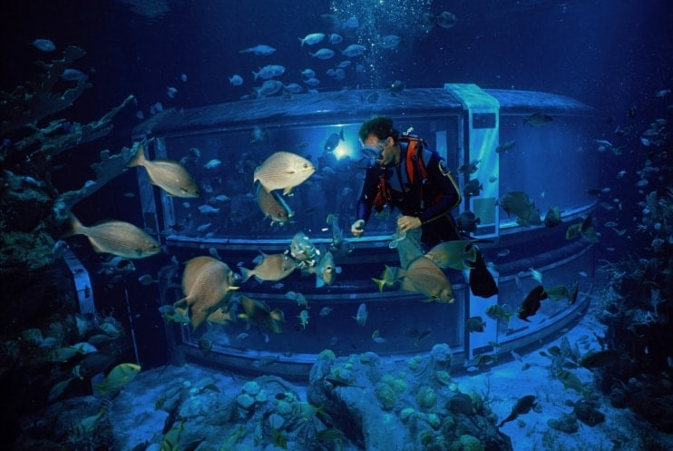 Image result for the seas with nemo and friends disney world