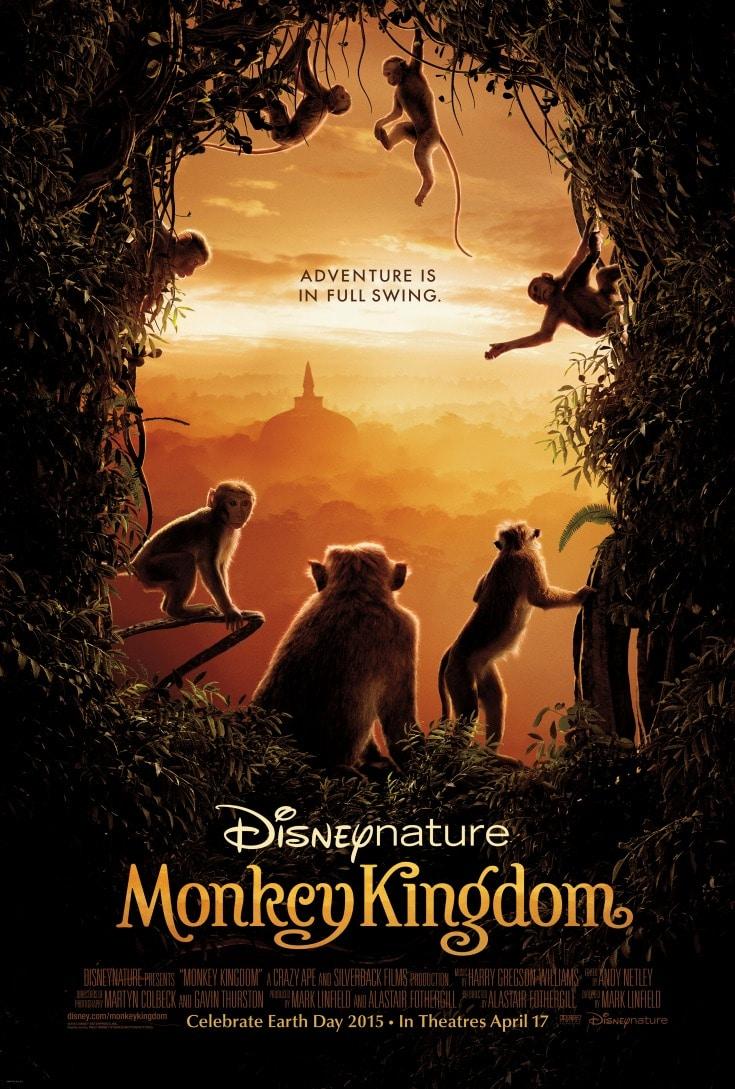 monkeykingdom5