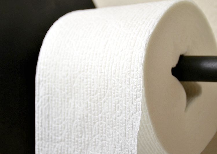 Celebrate National Toilet Paper Day by Going Tube-Free