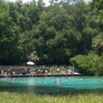 Create Family Memories this Spring in Ocala/Marion County