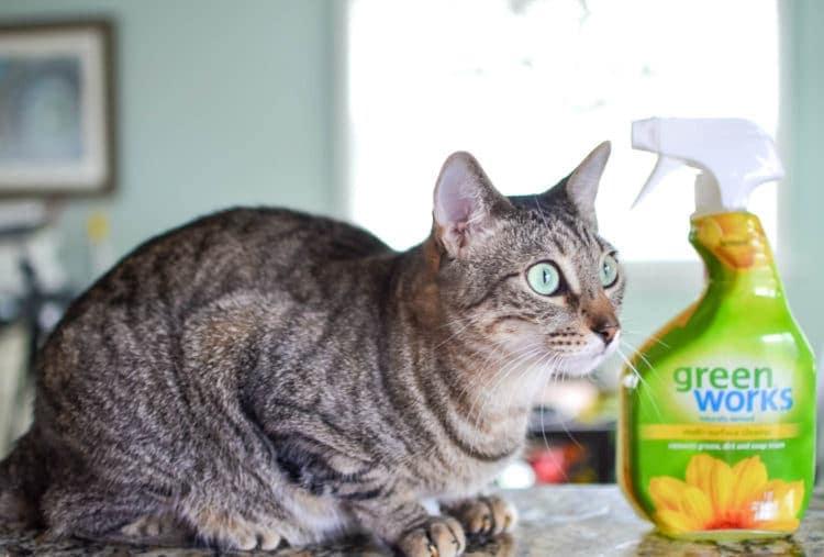 green works safe for pets