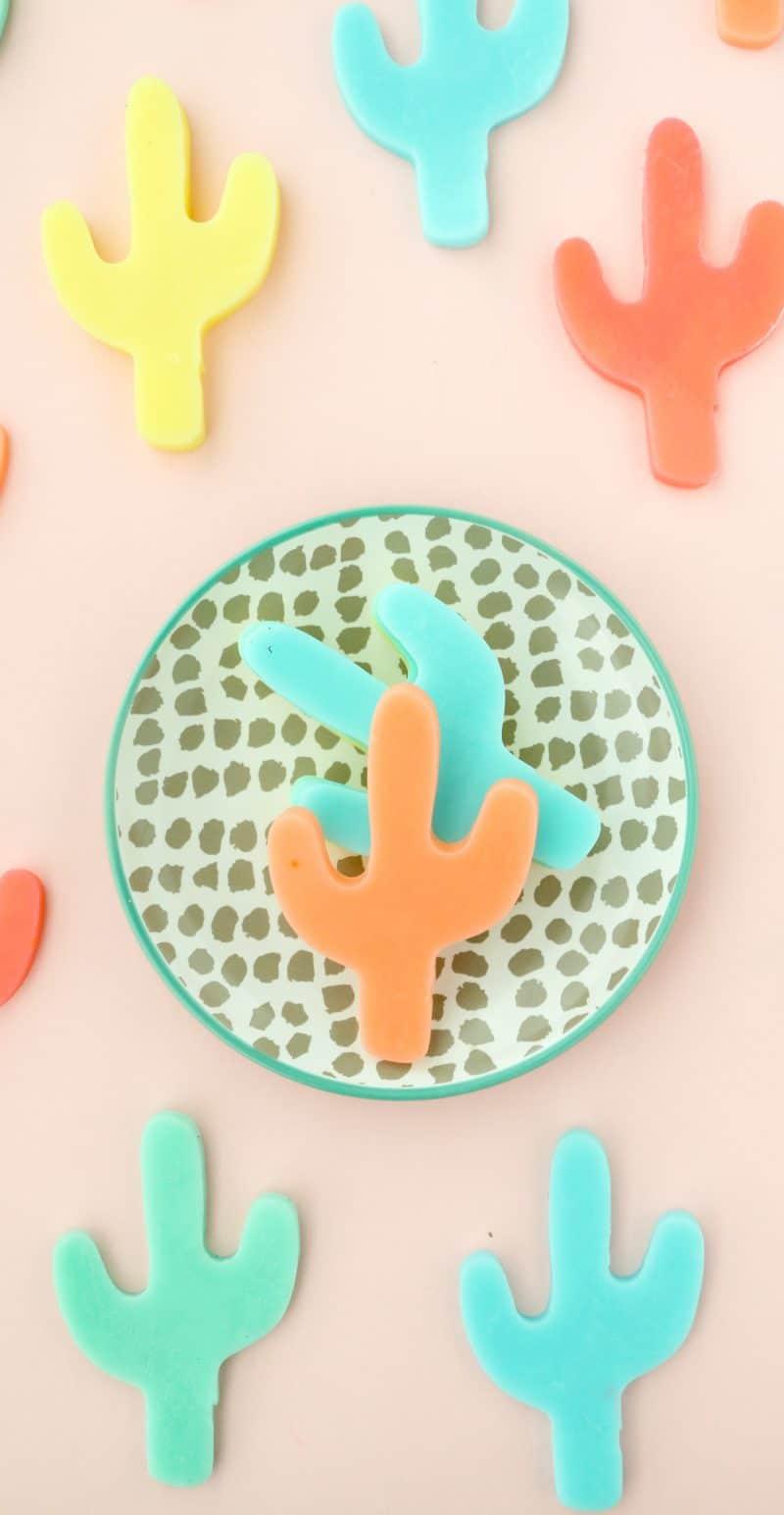 diy cactus soap