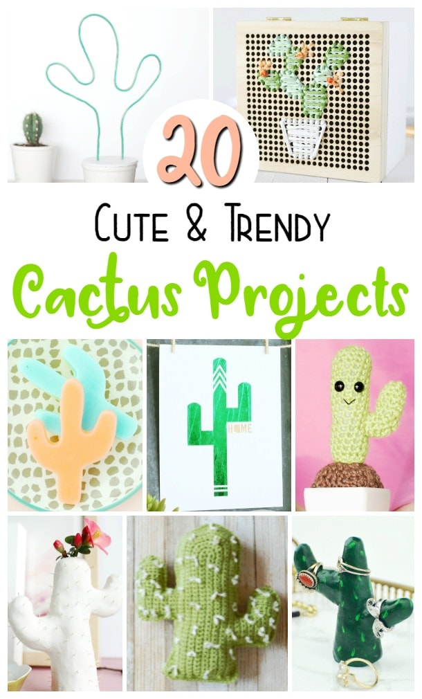diy cactus projects