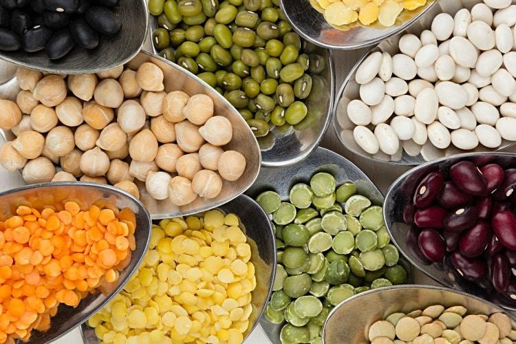 pulses beans lentils