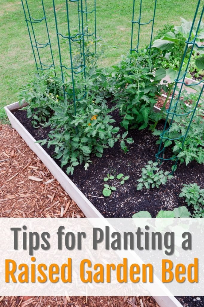 tips for planting a raised garden bed