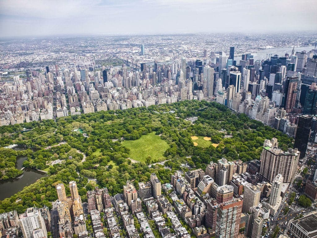 Never A Dull Day At New York City S Central Park 4 Spots
