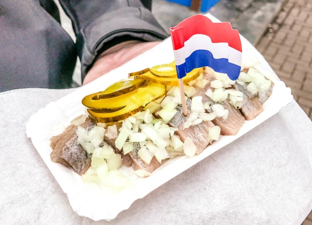 raw herring amsterdam