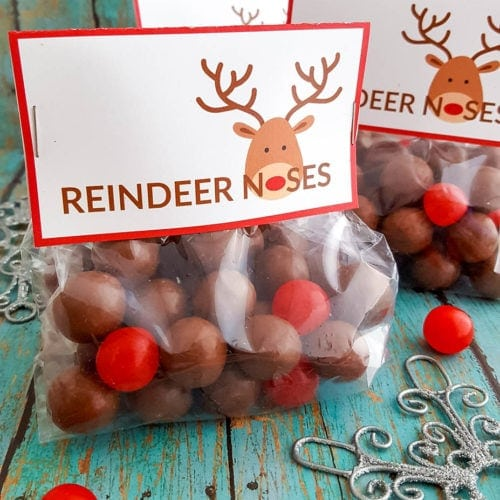 diy reindeer noses treat bags
