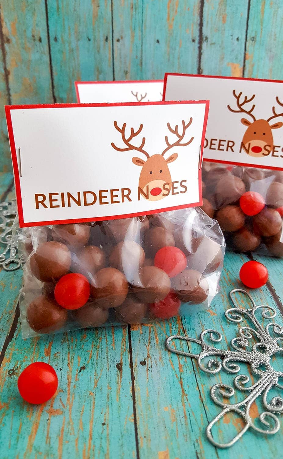 Diy Reindeer Noses Treat Bags With Free Printable Labels