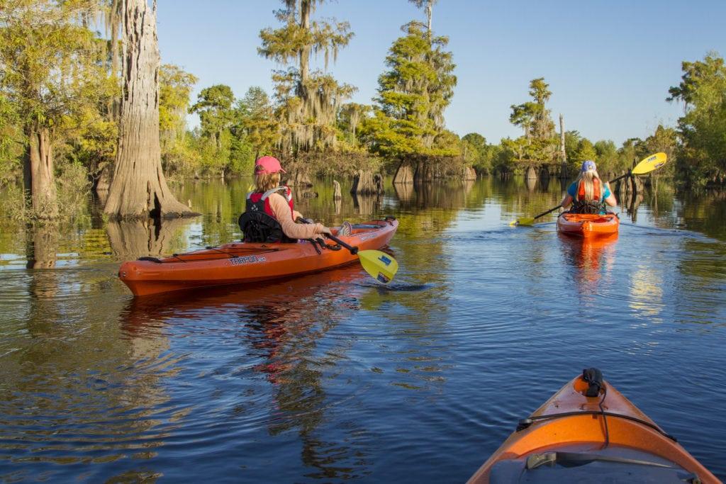 gulf county kayaking
