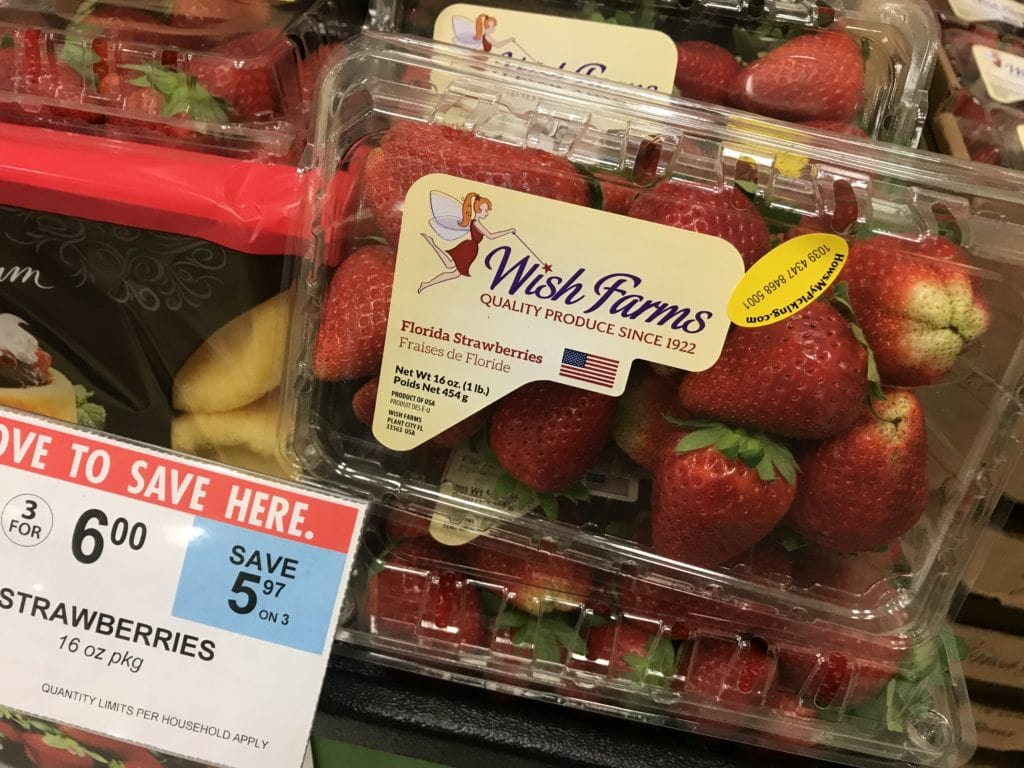 fresh from Florida strawberries
