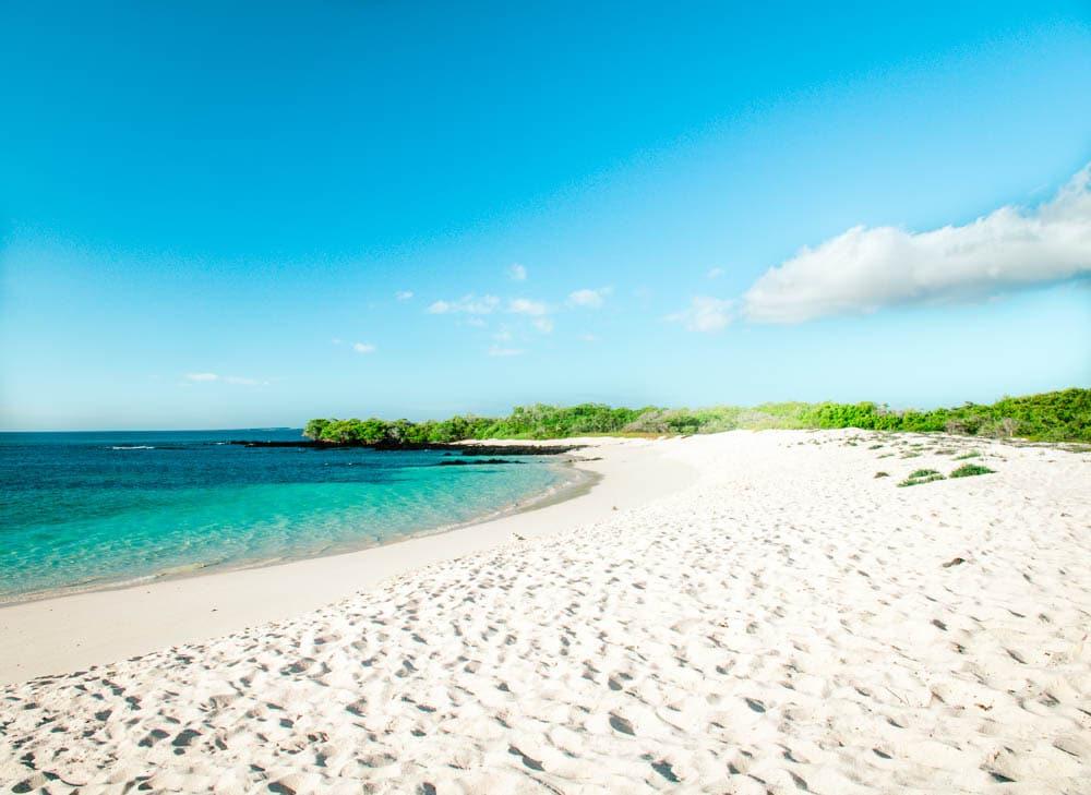 galapagos cruise beach