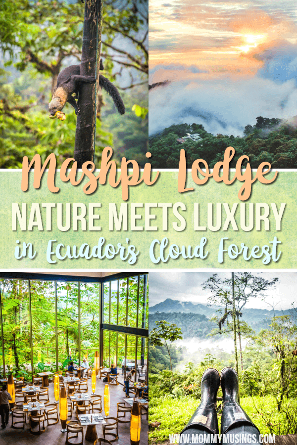 Mashpi Lodge - Nature Meets Luxury in Ecuador's Cloud Forest