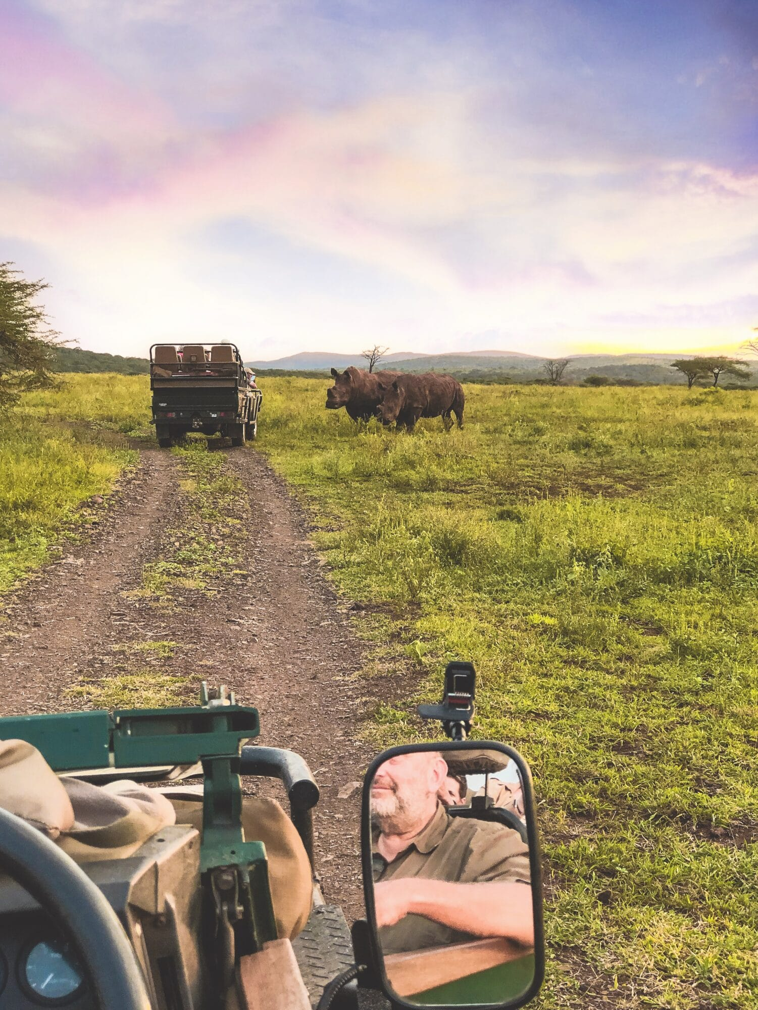 South Africa safari bucket list