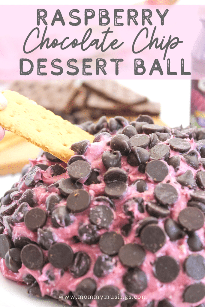 chocolate chip dessert ball