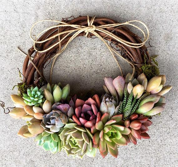 Succulent Juliette Wreath