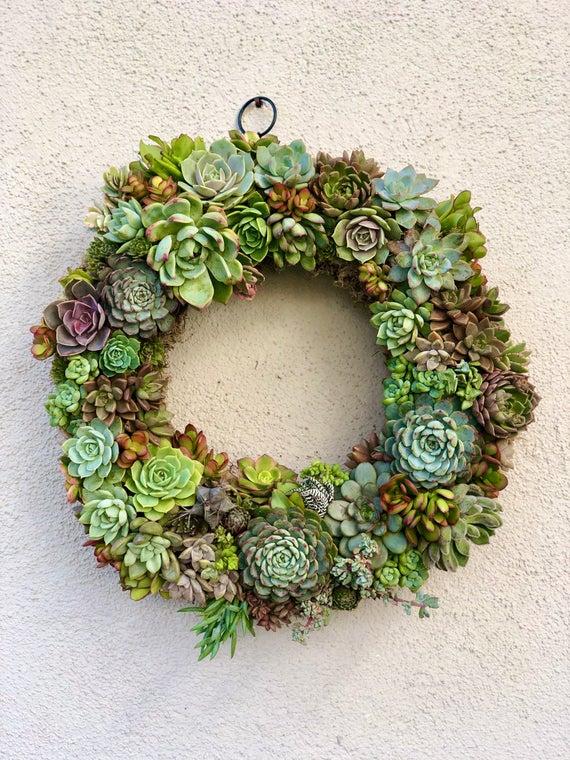 Easy DIY Succulent Wreath Kit